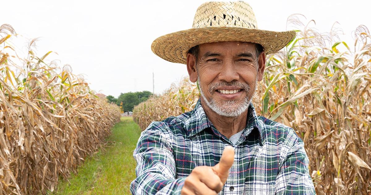 Trabalhador rural passa a ter novas regras para comprovar atividade